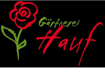 logo dns werbestudio
